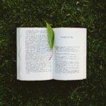 ワーキングマザーにぜひ読んでもらいたい!おすすめの本